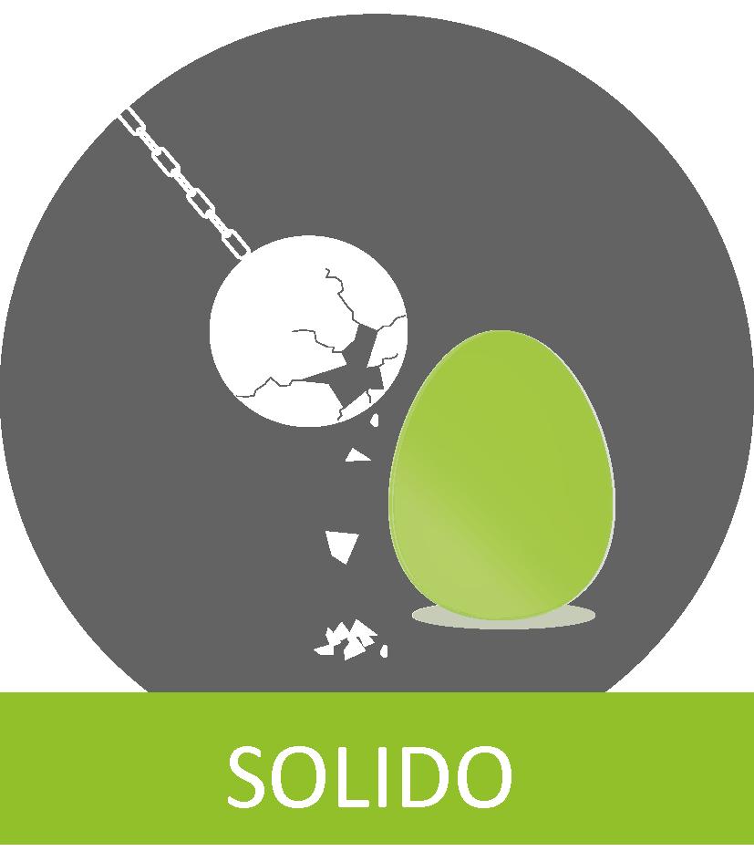 ULTRAHEAT T450 characteristic solido